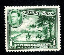 126 X)  Br.Guiana 1938  SG.308a ~    Mnh** - British Guiana (...-1966)