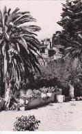 France Grasse Vue Prise Du Jardin Du Parc Palace - Grasse
