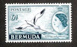 148 X)  Bermuda 1953  SG.143 ~  Mnh** - Bermuda