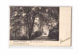 BELGIQUE Le Roeulx, Parc, Sous Bois, Ed Nels, 1904, Dos 1900 *** Princesse De Croij *** - Le Roeulx