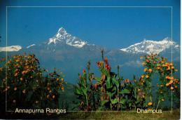 NEPAL : Machhapuchhare (Mount Fishtail) & Annapurna Range From Dhampus - Nepal