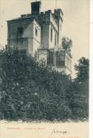 Farciennes - Chalet M. Bolle - 190? ( Voir Verso ) - Farciennes