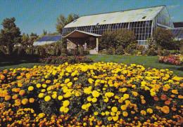 Canada Marigolds and Tropical Aviary Calgary Zoo Alberta