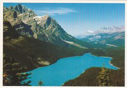 Canada Peyto Lake Banff National Park Alberta