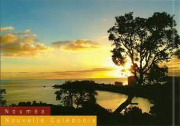 Nouvelle Calédonie New Caledonia (Q) CPM Neuve Unused Postcard NOUMEA Sunset Editions SOLARIS N°2399 - Nouvelle-Calédonie