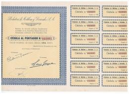 ACCION ANTIGUA - ACTION ANTIQUE = Productora De Metileno Y Derivados SA  1942 - Acciones & Títulos