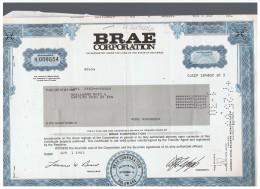 ACCION ANTIGUA - ACTION ANTIQUE = BRAE  Corporation 1983 - Acciones & Títulos
