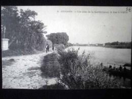 AVIGNON UN COIN DE LA BARTHELASSE LE BAC A TRAILLE - Avignon