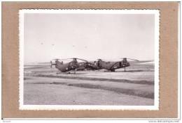 """PHOTOS - GUERRE D´ALGERIE - PHOTO - HELICOPTERES PIASECKI H-21 / BOEING VERTOL H-21 """" BANANE VOLANTE """" AU SOL - Guerre, Militaire"""