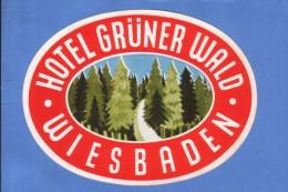 VINTAGE LUGGAGE LABEL ** ANCIENNE ETIQUETTE HOTEL  DE BAGAGE  **  HOTEL GRUNER WALD WIESBADEN - Hotel Labels