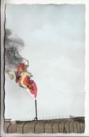 ALGERIE Ouargla ( Hassi Messaoud ) PETROLE GAZ : Torches Brulage Des Gaz - SN REPAL  CPSM PF N° 4 ( Petroleum Gas Oil ) - Ouargla