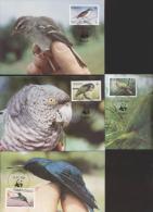 Dominica Maxi Karten  836-839 Vögel - Dominica (1978-...)
