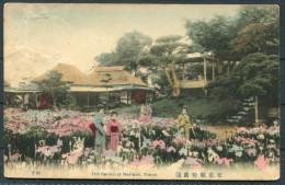 Japan Tokyo - Iris Gardens At Horikiri - Tokio