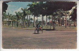 MADAGASCAR ( Afrique Africa ) TAMATAVE - Avenue De La Libération Et Un Pousse Pousse N° 13 - Madagascar