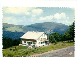 CP - MARKSTEIN (88) Vosges Trotters Refuge - France