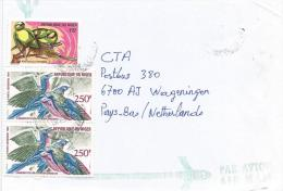 Niger 2002 Niamey Parakeet Lamprocolius Bird Cover - Niger (1960-...)