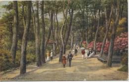 A R QUINTON 2579 - THE PINE WALK, BOURNEMOUTH - Quinton, AR