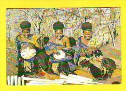 Postcard - Swaziland   (V 19047) - Swaziland