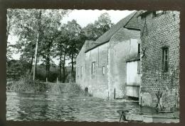 Grobbendonck (Grobbendonk)  : Molenhuis