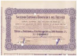ACCION ANTIGUA - ACTION ANTIQUE = Sociedad Española Hidraulica Del Freser 1917 - Acciones & Títulos