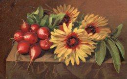 BELLE ILLUSTREE Gaufrée : Tournesols Et Radis - Fleurs, Plantes & Arbres
