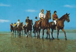 CPSM CHEVAL CHEVAUX PROMENADE BORD MER BELGIQUE - Pferde