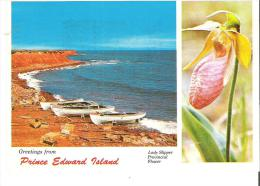 Greetings From Prince Edward Island - Canada's Garden Of The Gulf - Other