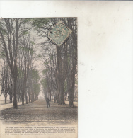 Charleville Mezière Le Bois D'Amour - Charleville