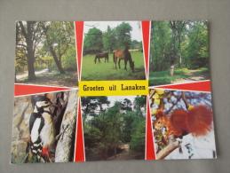 LANAKEN: Groeten - Lanaken