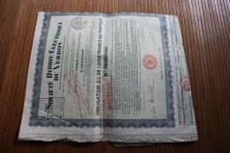 20 Mars 1931 Société Hydroélectrique Du Verdon Obligations 5 % 1000 Fr. Au Porteur ACTION TITRE - Electricité & Gaz