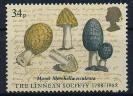 Great Britain Großbritannien Mushrooms Pilze °BM0355 MNH - Paddestoelen