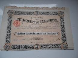 PETROLES DE DABROWA (jouissance) LILLE-NORD - Actions & Titres