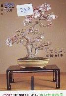 Carte Prépayée  Japon  * Arbre Nain * BONSAI (289)  Dwarf Tree Japan Prepaid Card * Karte Baum * - Fiori