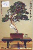 Carte Prépayée  Japon  * Arbre Nain * BONSAI (291)  Dwarf Tree Japan Prepaid Card * Karte Baum * - Flowers