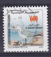 Tunisia 2002 Mi. 1523    600 (M) Bird Vogel Oiseau Korallenmöwe Seagull - Tunisia (1956-...)