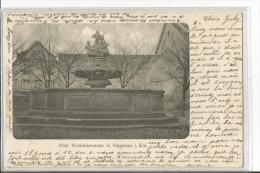 HAGUENEAU  ALTER KLOSTERBRUNNEN  FONTAINE GROS PLAN TIRAGE 1900 - Haguenau