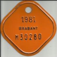 Plaque Vélomoteur Brabant 1981 - Plaques D'immatriculation