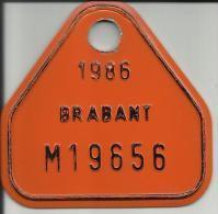 Plaque Vélomoteur Brabant 1986 - Plaques D'immatriculation