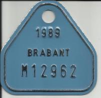 Plaque Vélomoteur Brabant 1989 - Plaques D'immatriculation