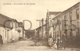 PORTUGAL - ALVEGA - UM TRECHO DA RUA DIREITA - 1915 PC. - Santarem