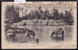 Tunisie - Gabès : Le Barrage De Chenini - âne à L'eau - Vers 1904 (12´801) - Tunisie