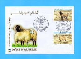 Algérie Algeria Algerien FDC Ovins Ovin D'Algerie Sheep Moutons Mouton 2011 - Sellos