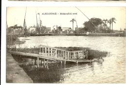 1900s? Egypt, Alexandria/Alexandrie Mahmoudia Canal Ppc P.Coustoulides, Unused - Alexandria