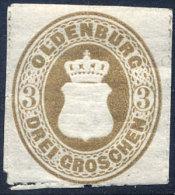 OLDENBOURG N°19 NEUF* - Oldenburg