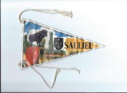 Drapeaux et Fanions/France/SAULIEU/Bo urgogne/bi -face/Fanion /Ann�es 1950-1960     DFA8
