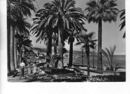 """Bellissima Cartolina  Anni 50  (formato Grande)      """"  Riviera Dei Fiori - San Remo - Giardini Imperatrice  """" - Imperia"""