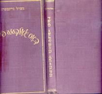 HEBREO HEBREW - BERL GRYNBERG - EL PAJARITO DE ORO - DOS GOLDENE FEIGUELE - NOVELA EDITORIAL AMIGOS AÑO 1955 - Libros, Revistas, Cómics
