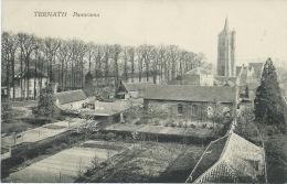 Ternat - Panorama Van Een Prachtig Deel Van De Gemeenschappelijke ( Verso Zien ) - Ternat