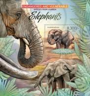 Uganda. 2012 Elephants. (409b) - Elephants