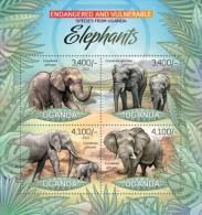 Uganda. 2012 Elephants. (409a) - Elephants